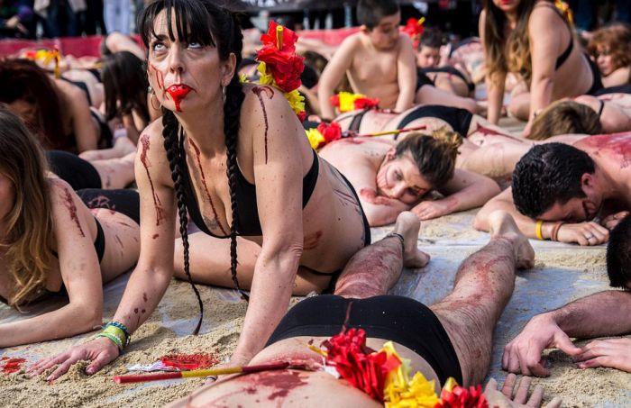 В Мадриде устроили акцию протеста против корриды