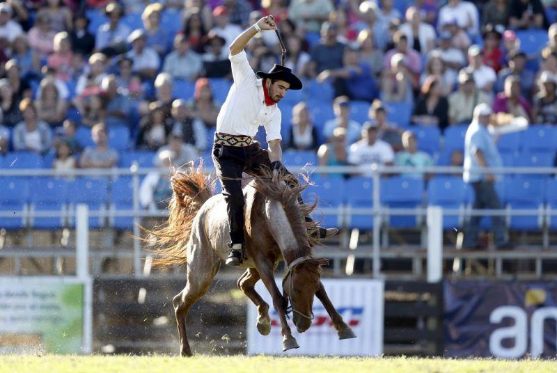 Соревнования наездников в Монтевидео