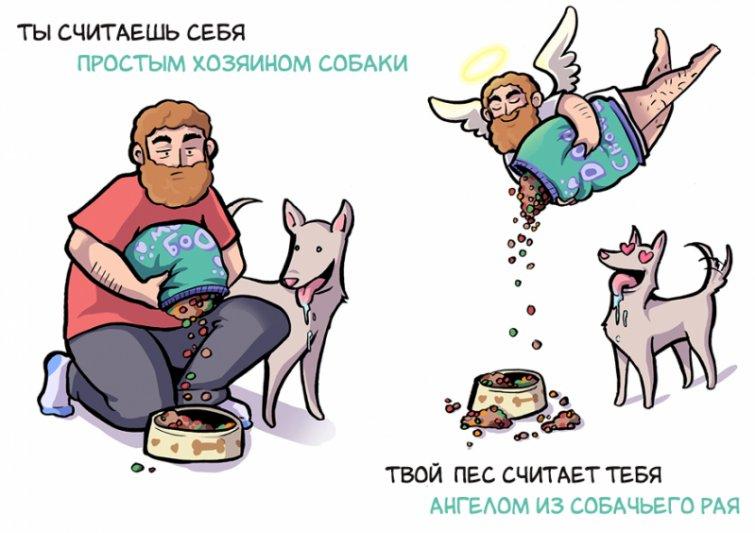 Как видите себя вы, и как видит вас ваша собака