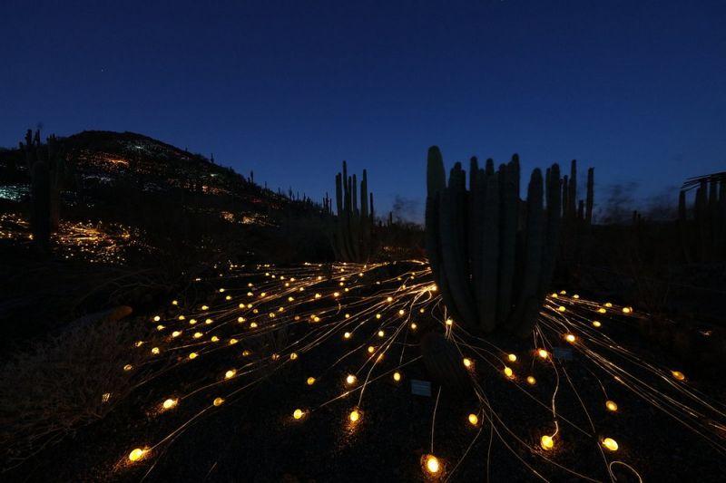 Световые инсталляции от Брюс Манро