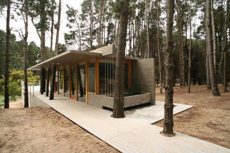 17 домов, доказывающих что не обязательно рубить деревья