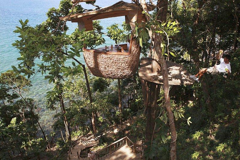 Ресторан Птичье гнездо, расположенный на дереве