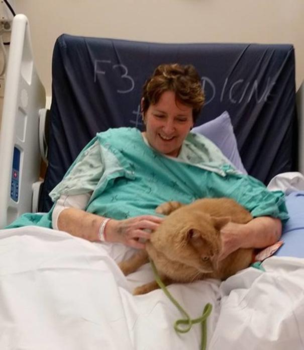 Больница позволяет пациентам видеться со своими питомцами, чтобы они быстрее выздоравливали