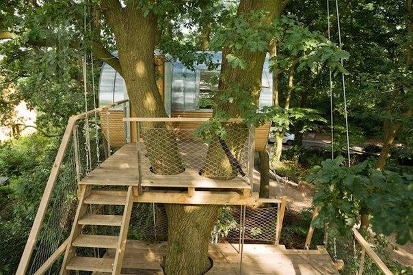 Домик на дереве из экологичных материалов