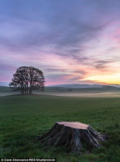 Йоркшир в фотографиях от Дэйва Здановича
