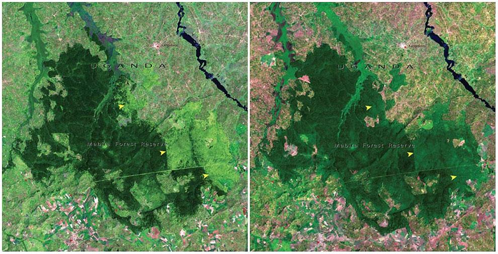 Как меняется наша планета на снимках от НАСА