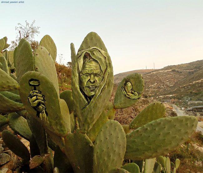 Палестинский художник рисует невероятные картины на кактусах