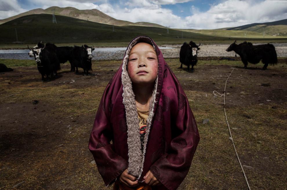 Победители фотоконкурса Sony World Photography 2016