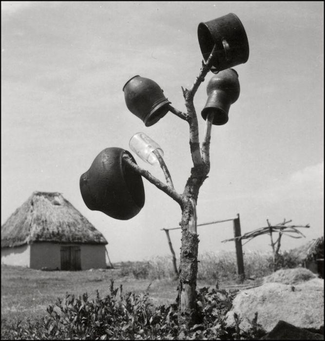 Оккупированная немцами Украина в фотографиях Герберта Листа