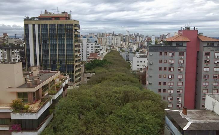 Самая зеленая улица в мире