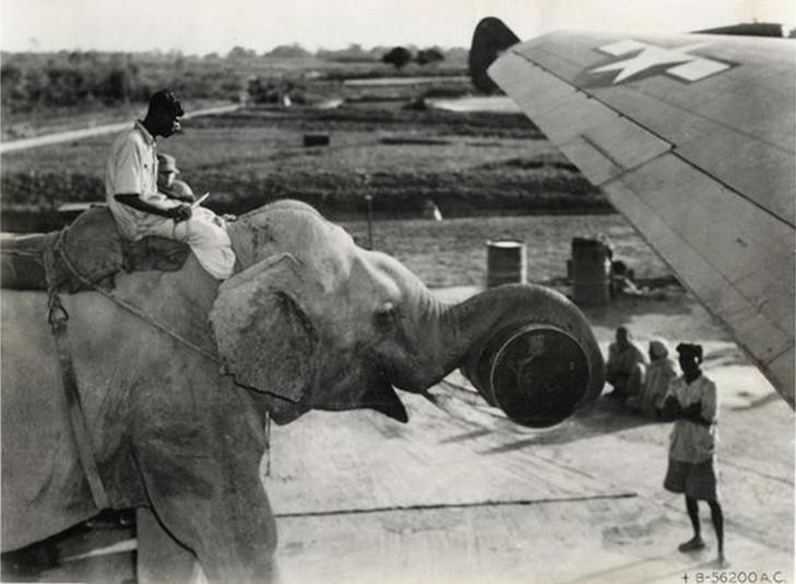 26 чумовых фотографий о странностях прошлого