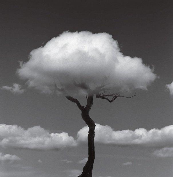 Креативные фотографии от Чемы Мадоса
