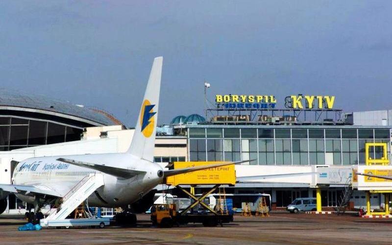 8 самых необычных жителей аэропортов