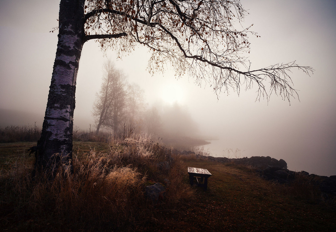 Эстетика хмурых пейзажей от норвежского фотографа