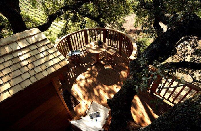 Домик на дереве посреди лавандового поля