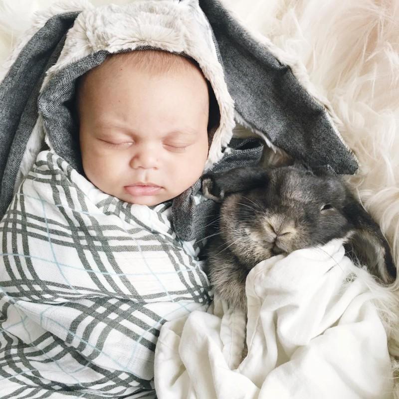 Мама фотографирует дружбу своего малыша с кроликами