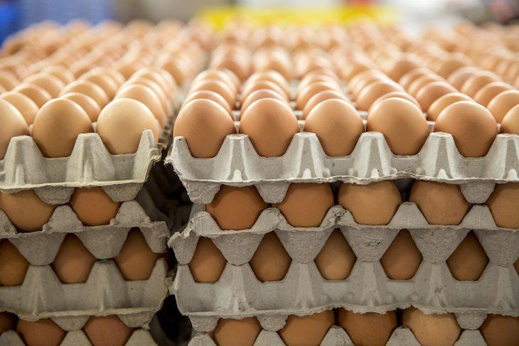 10 важных фактов о яйцах от Росконтроля