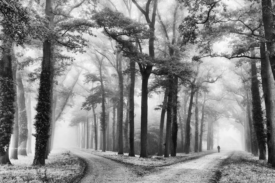 20 популярных чёрно-белых фотографий на 500px в 2016 году