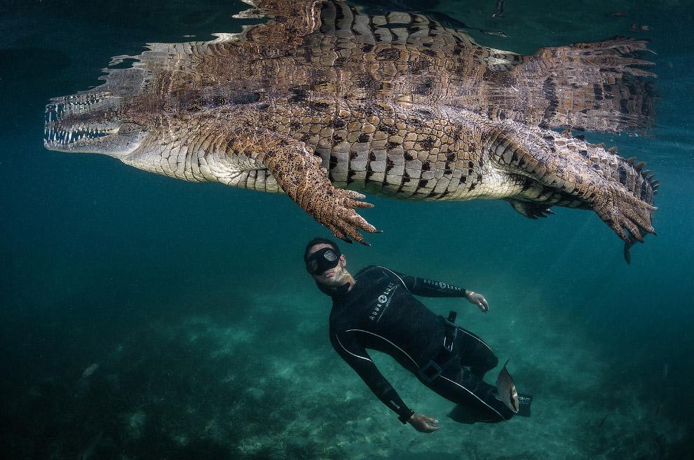 Фотографии с конкурса National Geographic Traveler 2016 — продолжение