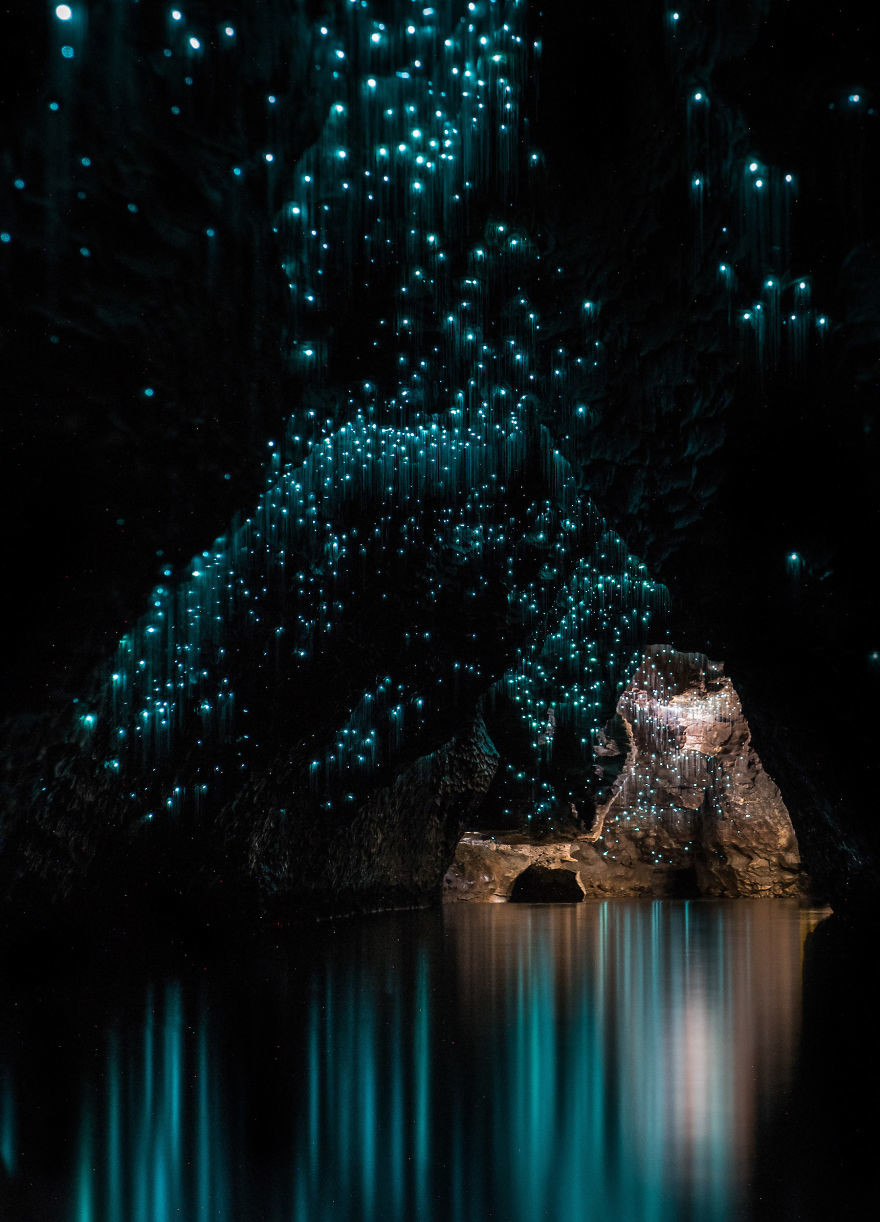 Удивительные пещеры светлячков Вайтомо в Новой Зеландии