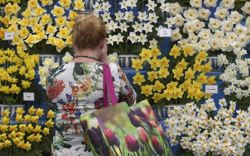 Цветочное шоу Chelsea Flower Show-2016 в Лондоне