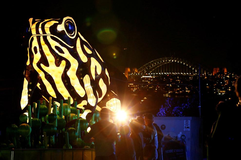 Фестиваль световых скульптур в Сиднее