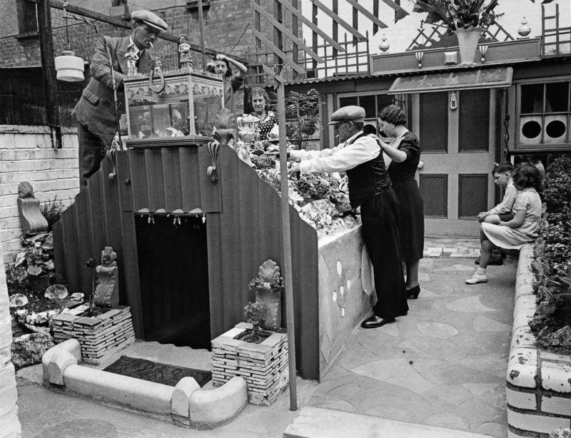 Маленький семейный бункер во дворе заднего дома