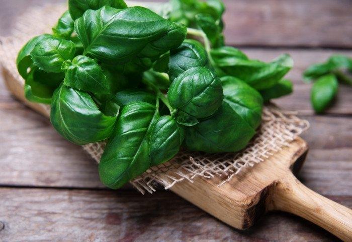 8 специй и трав, которые помогают похудеть
