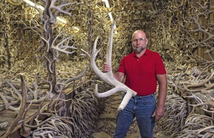 Коллекционер собрал 15 000 рогов различных животных