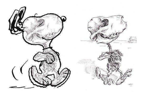Анатомические особенности персонажей мультфильмов