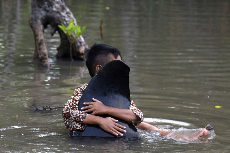 Десятки китов выбросились на берег в Индонезии