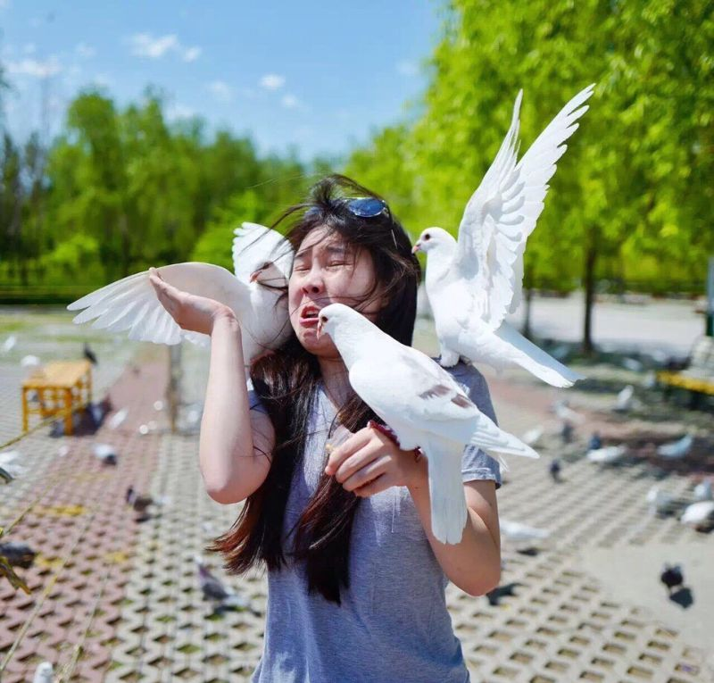 Девушка устроила милую фотосессию с голубями