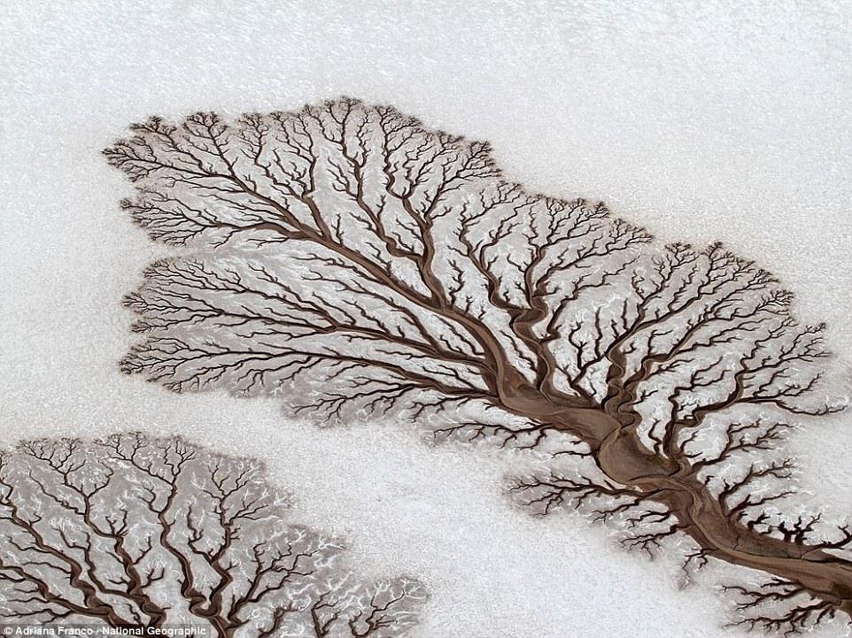 15 природных оптических иллюзий, которые выглядят круче фотошопа