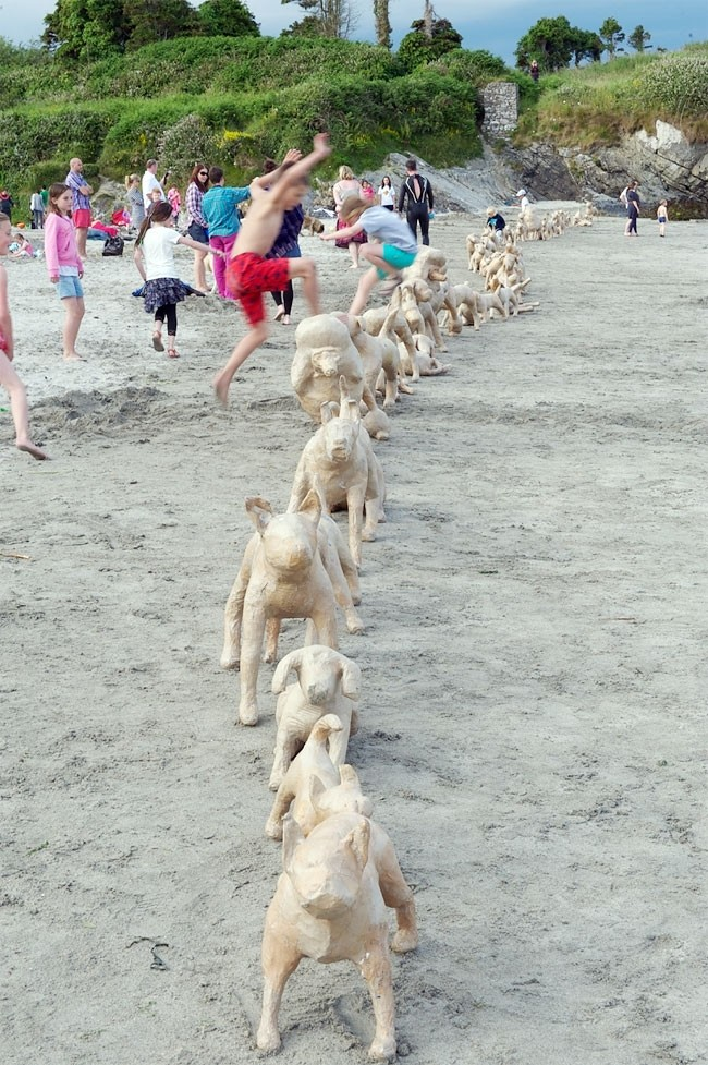120 собак на ирландском пляже