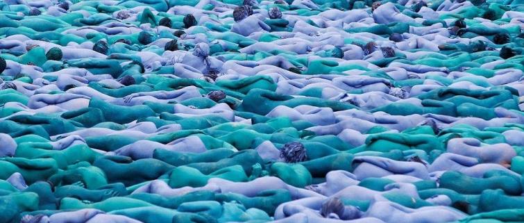 Целое синее море из людей