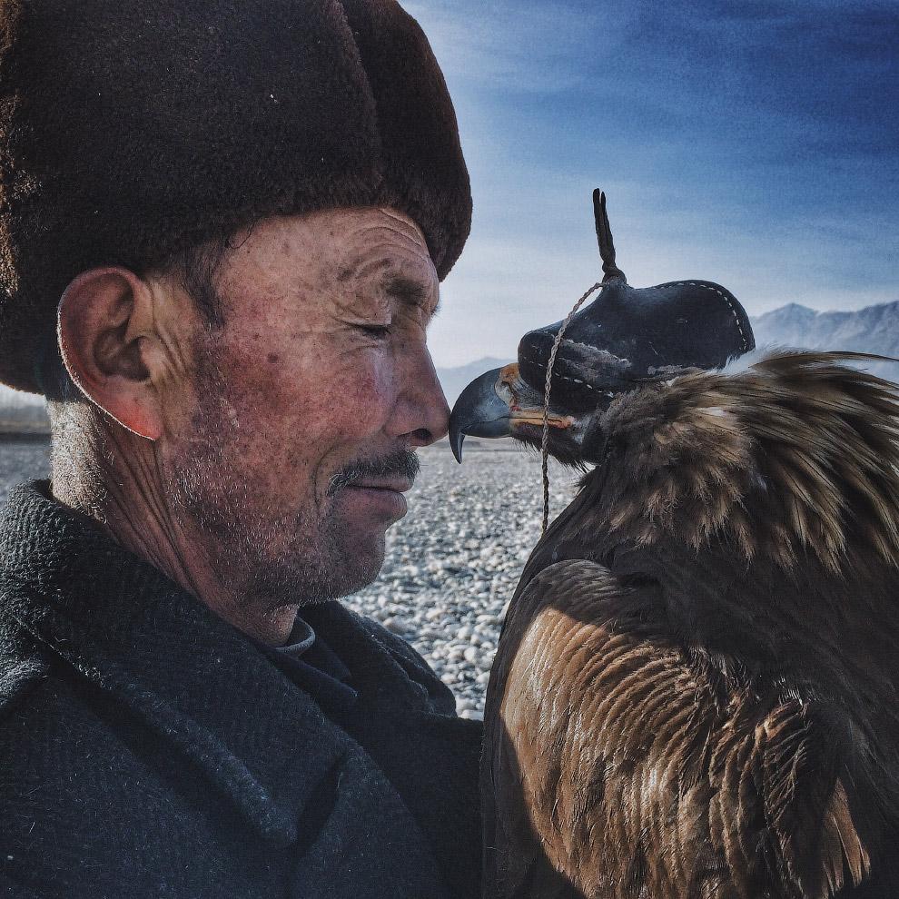 Фотографии победителей конкурса iPhone Photography Awards 2016