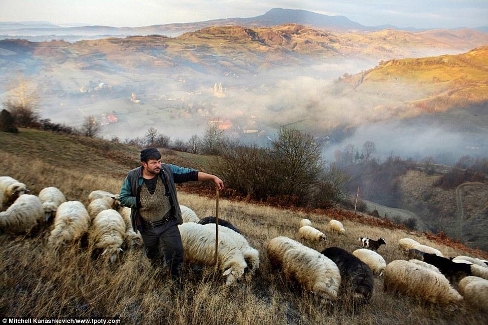 Фотоконкурс Travel Photographer of the Year 2016