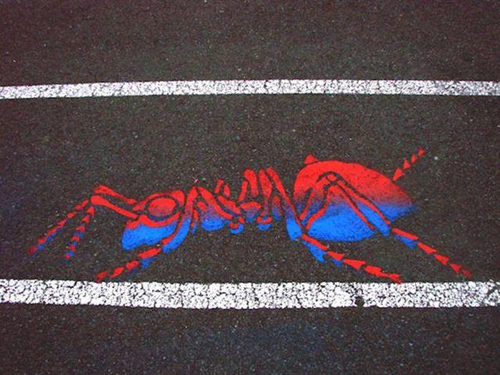 Великолепные уличные рисунки на дорогах Монреаля от Питера Гибсона