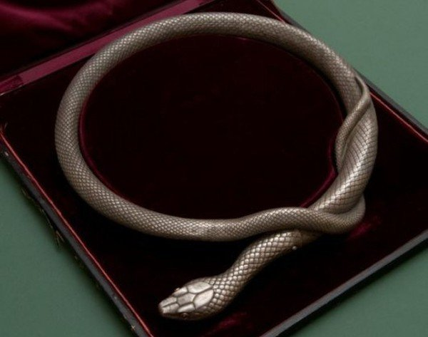Змея с секретом