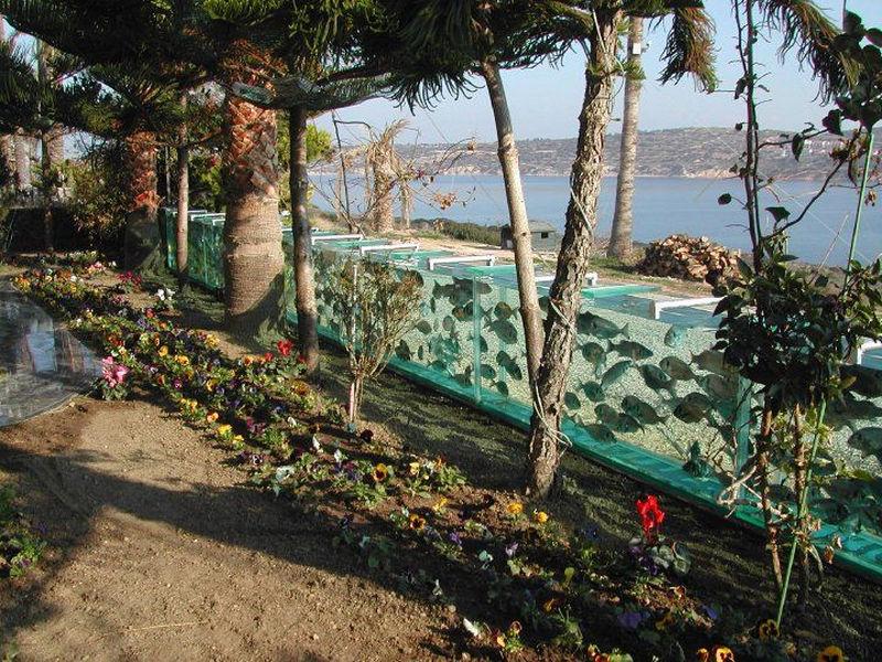 Необычный забор-аквариум на побережье Эгейского моря