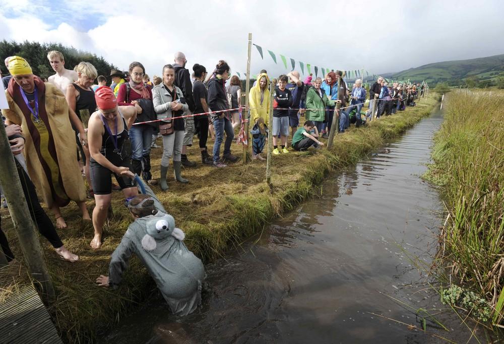 Всемирный чемпионат по плаванию в болоте 2016