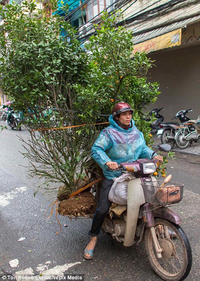 Вьетнамские мастера грузоперевозок