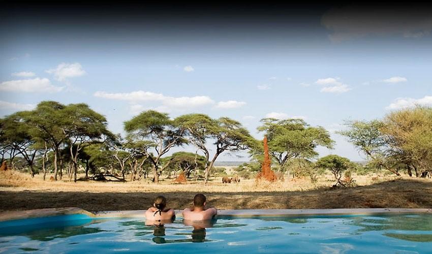 10 самых необычных бассейнов мира