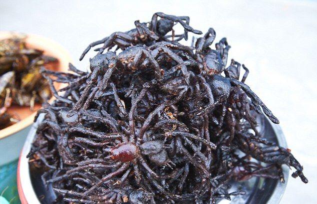 Как камбоджийцы справляются с нашествием тарантулов