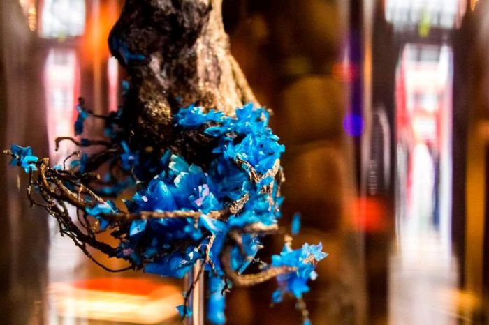 Удивительные цветы, украшенные драгоценными камнями
