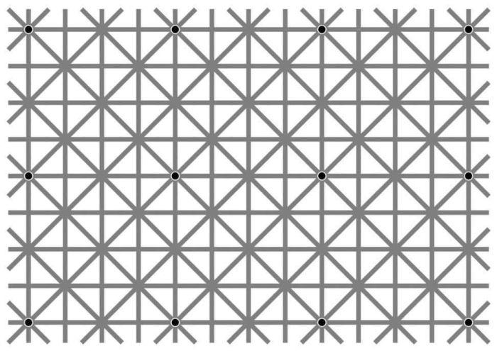 Оптическая иллюзия Нинье взбудоражила пользователей сети