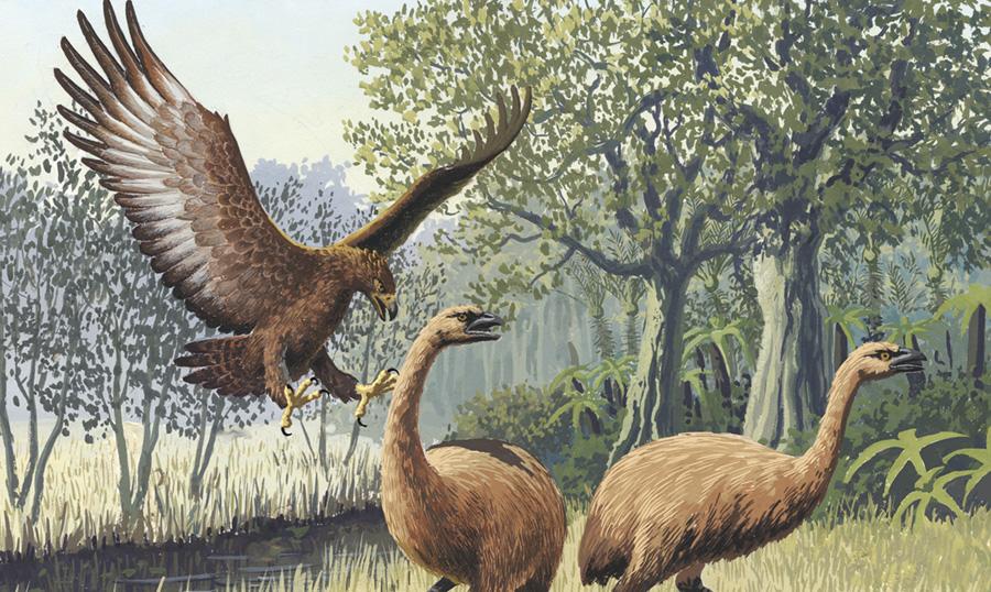 Годзилла наяву: вымершие виды, поражающие воображение