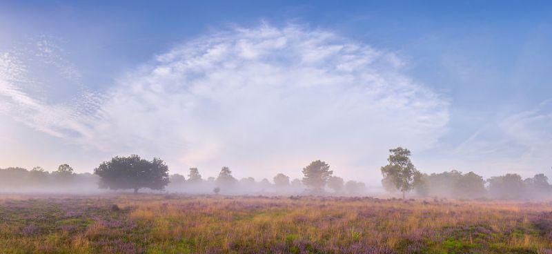 Нидерланды в августе от голландского фотографа
