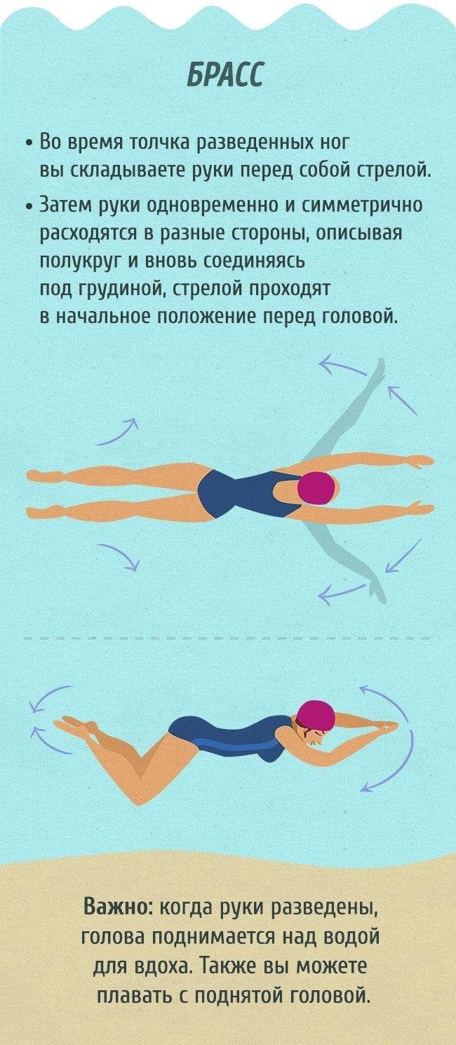 Полный гид для тех, кто хочет научиться плавать