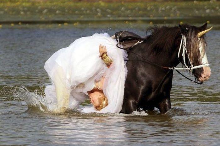 Лошадь испортила свадебную фотосессию американки